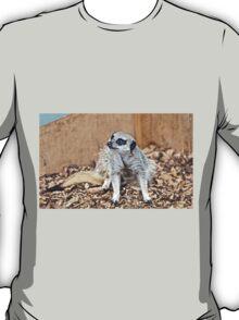 Meerkat gaze T-Shirt
