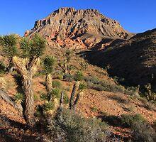 Desertscape by David Kocherhans
