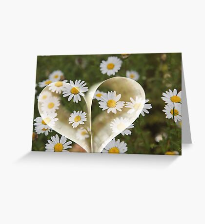 I love flower, I know boring - But I really do !! Greeting Card