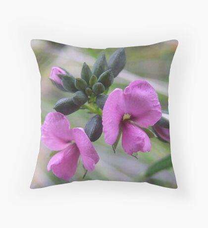 Gompholobium Knightianum Throw Pillow