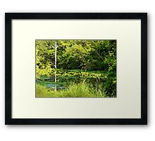Moore's Bayou In High Summer Framed Print