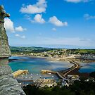 Marazion and Mounts Bay by David Wilkins