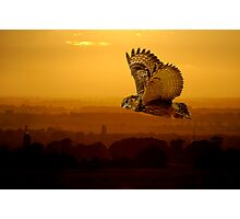 Eagle owl and the sunset Photographic Print