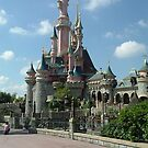 Disneyland Paris castle by ANDREW BARKE