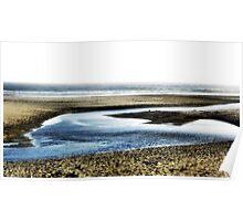 Beaches I Poster
