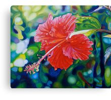 Tropical Hibiscus Canvas Print