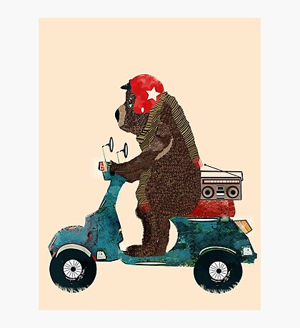 scooter bear Photographic Print