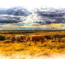 Resting Heifers Cows Art by DavidHornchurch