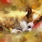 Sleeping dogs lie by rok-e