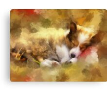 Sleeping dogs lie Canvas Print