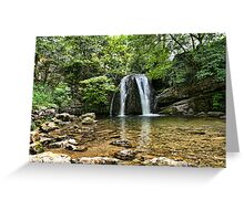 Janet's Foss Greeting Card