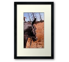 As We Ride Framed Print