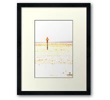 Danger on the Beach Framed Print