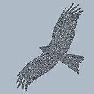 kite flying by Rachel Bachman