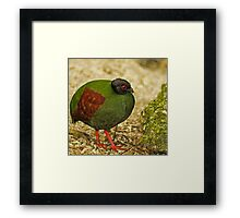 Just Feeling A Little Heavy This Morning... Framed Print