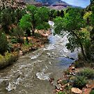 A River Runs Through Zion by Barbara Manis