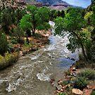 A River Runs Through Zion by Barbara Manis