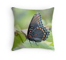 Red-spotted Purple Admiral butterfly... Throw Pillow