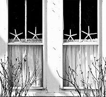 Window Stars... by Karen  Helgesen