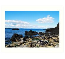 """ Bay of Fundy Shores "" Art Print"