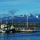 Tierra del Fuego by Juergen Weiss