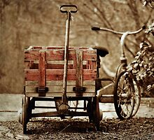 What We Used to Play With... by Karen  Helgesen