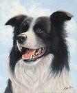 Border Collie Portrait by John Silver
