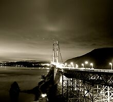 Golden Gate at Night #2 by David Jensen