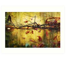Autumn mood Art Print