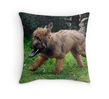 Toshi. Throw Pillow