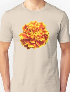 Pretty Perennial  T-Shirt
