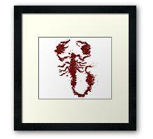 Scorpion Ives Framed Print