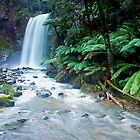 Hopetoun Falls, Otways National Park by Darren Greenwell