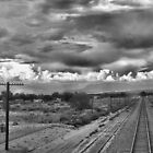On the right tracks by al holliday