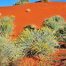 Cordillo sand dune by Bryan Cossart