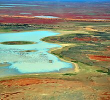 Floodwaters south of Birdsville from the air by Bryan Cossart