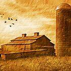 Tennesse Barn by CarolM