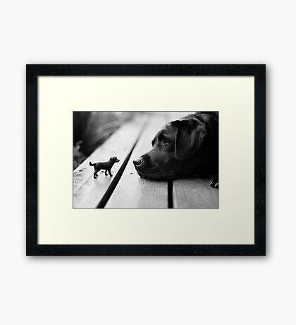 Mini Me Framed Print