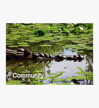 Community Photographic Print