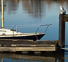 Boat & seagull. by Aler