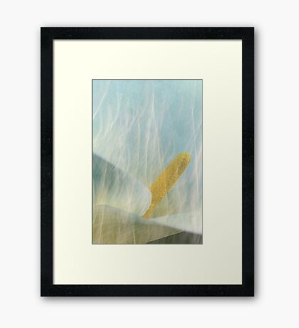 Beauty And The Beast.... Framed Print
