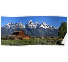 Bison At The Barn Panorama Poster