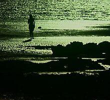 moonlight  by Alenka Co