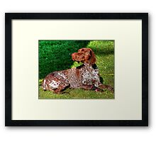 This is Neely Framed Print