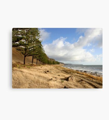 Coastal Landscape in Australia Canvas Print