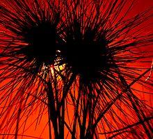 Sundown Broome by craigfire