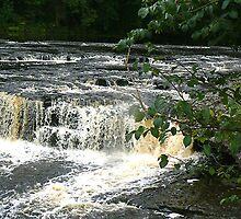 Aysgarth Falls - Yorks Dales. by Trevor Kersley