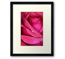 Pink Satin Rose Framed Print