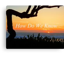 How Do We Know Canvas Print