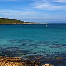 Coverack Bay by Country  Pursuits